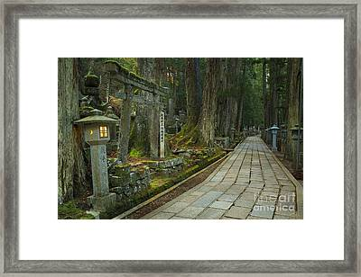 Path Through Koyasan Okunoin Cemetery, Japan Framed Print