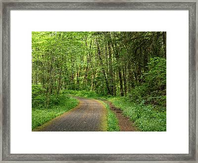 Framed Print featuring the photograph Path Through The Woods by Jean Noren