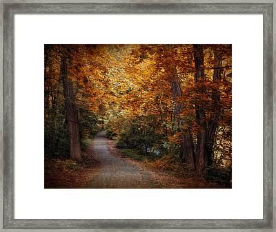 Path To Autumn  Framed Print