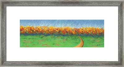 Path To Autumn Trees Framed Print