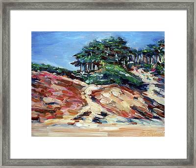 Path To Baker Beach Framed Print by Sheila Tajima