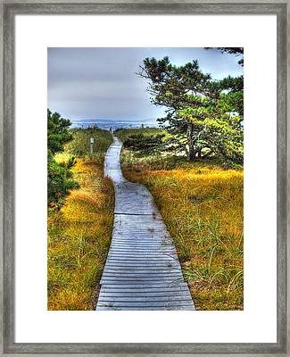 Path To Bliss Framed Print by Tammy Wetzel