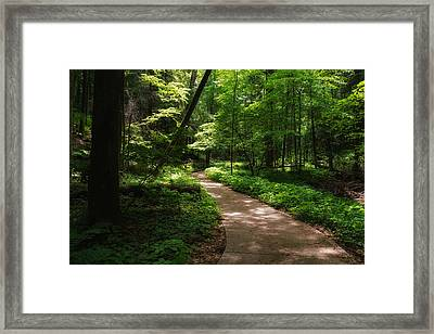 Path To Conkle's Hollow Framed Print by Rachel Cohen