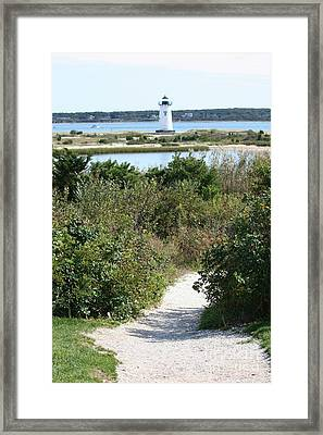 Path To Edgartown Lighthouse Framed Print