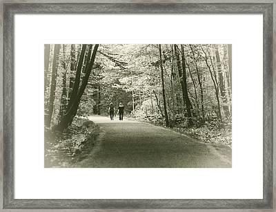 Path To Friendship Framed Print