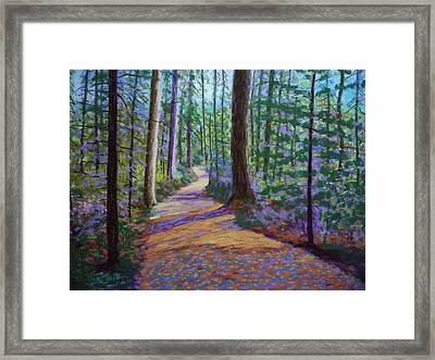 Path To Hubbards Farm Market Framed Print