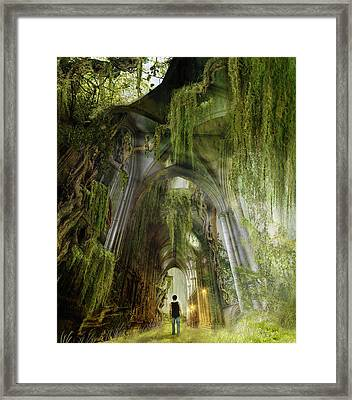 Path To Inner Peace Framed Print by Mary Hood