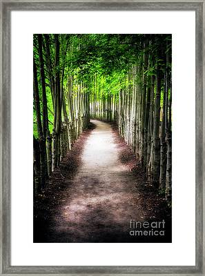 Path To My Destination Framed Print by George Oze