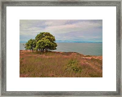 Path To Peace Framed Print by Dan Sproul