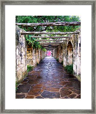 Path To The Alamo Framed Print