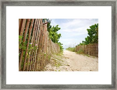 Path To The Beach Framed Print by Matt Tilghman