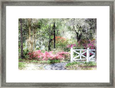 Path To The Bridge Framed Print