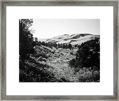 Framed Print featuring the photograph Path To The Dunes by Allan McConnell