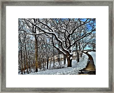 Path To The Lookout Framed Print