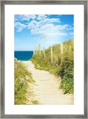 Path To The Ocean Framed Print by Amanda Elwell