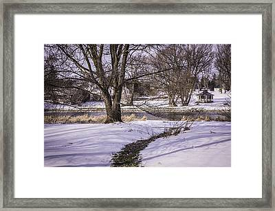 Path To The River Framed Print by Anne Witmer