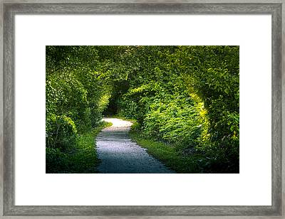 Path To The Secret Garden Framed Print by Marvin Spates