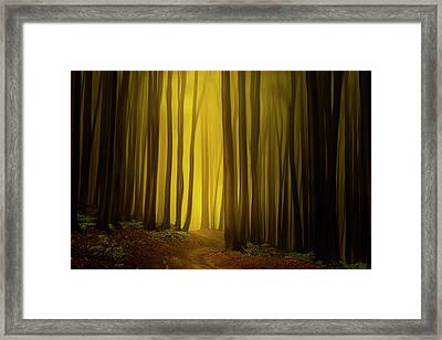 Path To The Source Framed Print