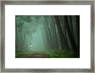 Path To The Unknown Framed Print by Martin Podt