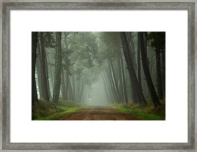 Path To The Unkown II Framed Print by Martin Podt