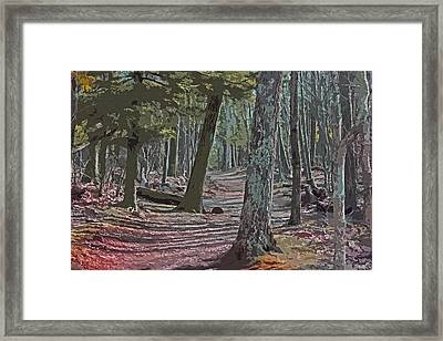 Path We Chose Framed Print