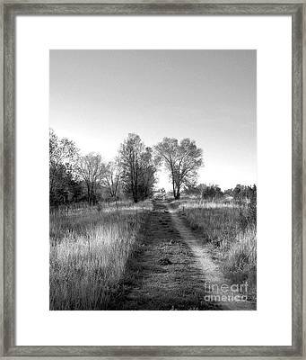 Path Yet Taken Framed Print by Jack Norton