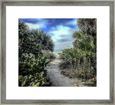 Framed Print featuring the photograph Pathfinder by Blake Yeager