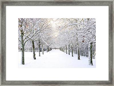 Pathway In Snow Framed Print