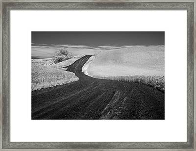Pathway In The Palouse Framed Print