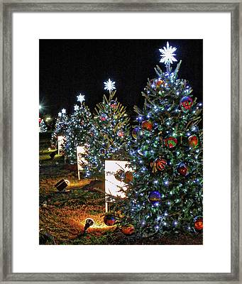 Framed Print featuring the photograph Pathway Of Peace by Suzanne Stout
