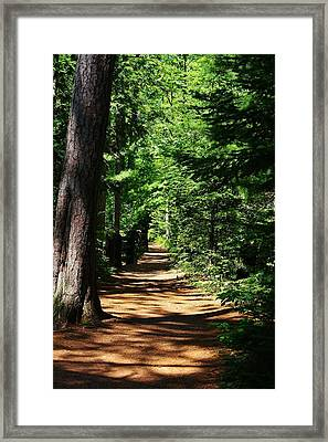 Pathway To Peacefulness Framed Print