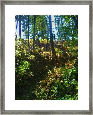 Pathway To Surrender Methow Valley Photography By Omashte Framed Print by Omaste Witkowski