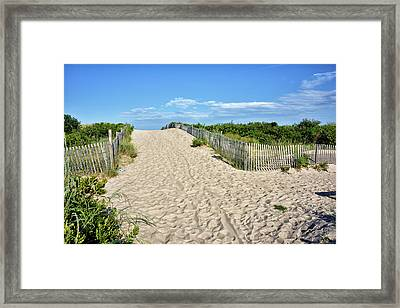 Pathway To The Beach - Delaware Framed Print by Brendan Reals