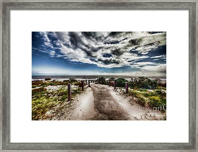Pathway To The Beach Framed Print by Douglas Barnard