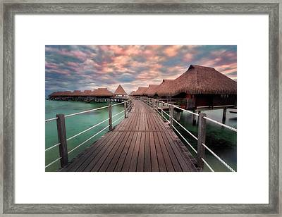 Pathway To The Ocean  Framed Print by Nicki Frates