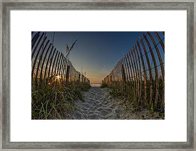 Pathway To The Sun Framed Print by Barbara Houston