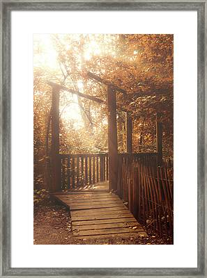 Pathway Framed Print by Wim Lanclus