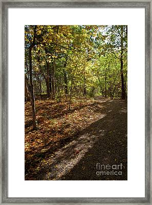Framed Print featuring the photograph Pathways In Fall by Iris Greenwell