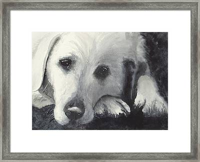 Patience Framed Print by Ally Benbrook