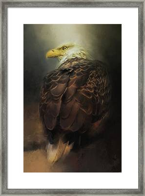 Patience Of The Eagle Framed Print by Jai Johnson