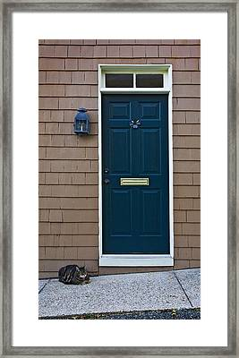 Patiently Waiting Framed Print by Murray Bloom