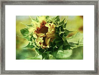 Patina Green Elegant Sunflower Framed Print by Aimee L Maher Photography and Art Visit ALMGallerydotcom