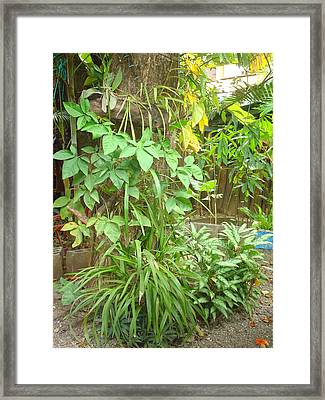 Patio 2 Framed Print