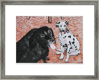 Patio Dogs Framed Print by Laura Brightwood