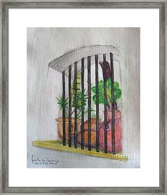 Patio Window - Gifted Framed Print by Judith Espinoza