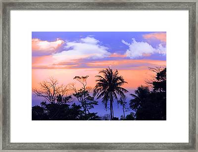 Patong Thailand Framed Print by Mark Ashkenazi