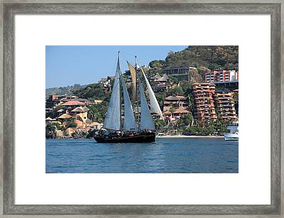 Patricia Belle 01 Framed Print by Jim Walls PhotoArtist