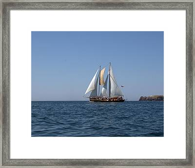 Patricia Belle 02 Framed Print by Jim Walls PhotoArtist
