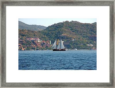 Patricia Belle Framed Print by Jim Walls PhotoArtist