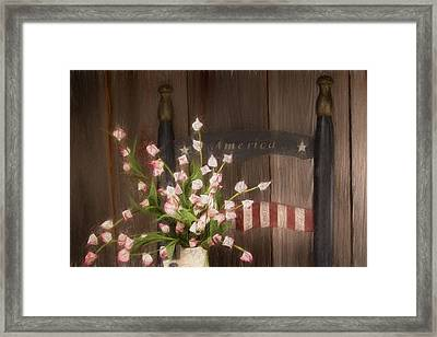 Patriotic Seating Framed Print